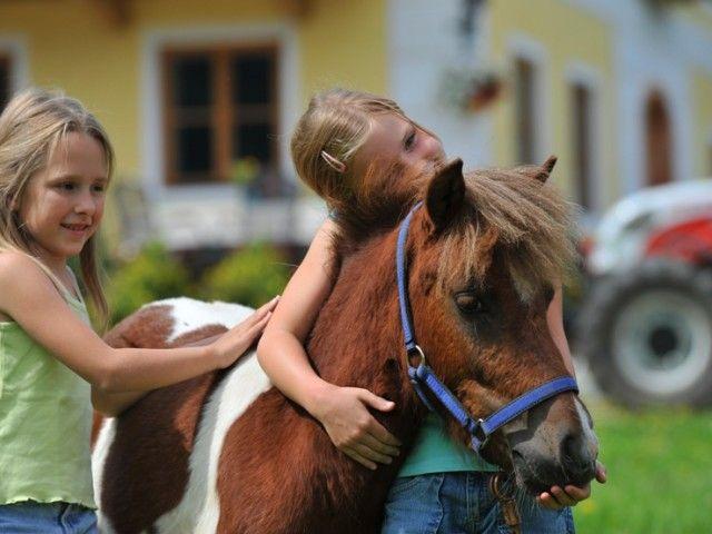 Pony Sunny