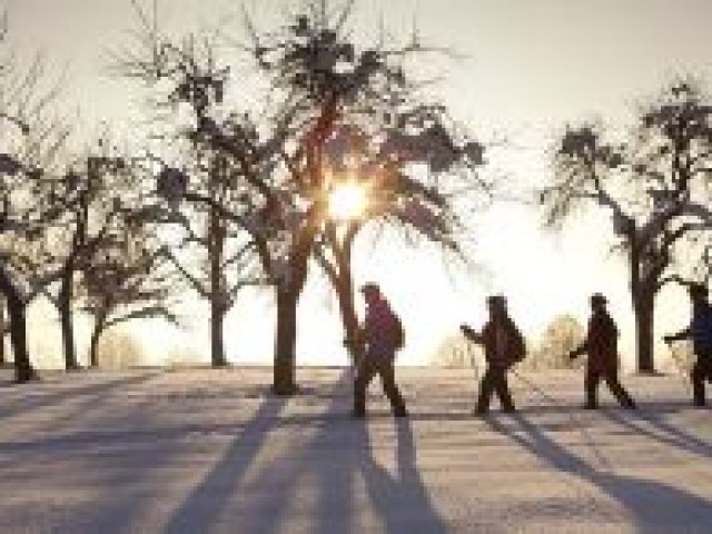 winterwandern-2snww.jpg