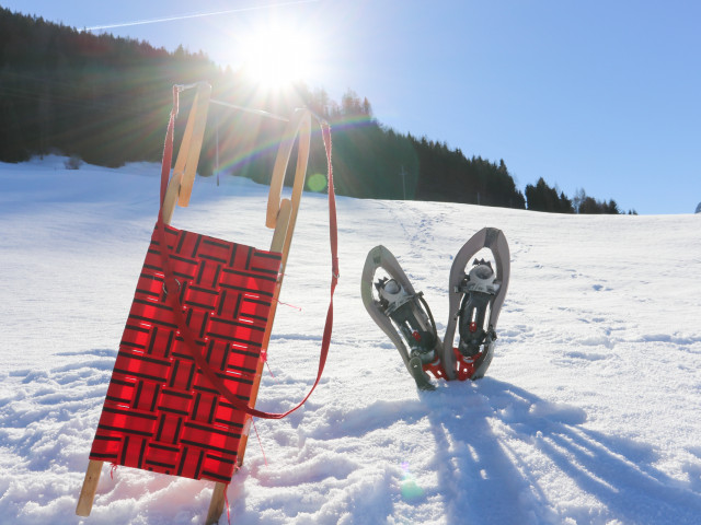 winter-saalachtal-winteraktivitäten-7721.jpg