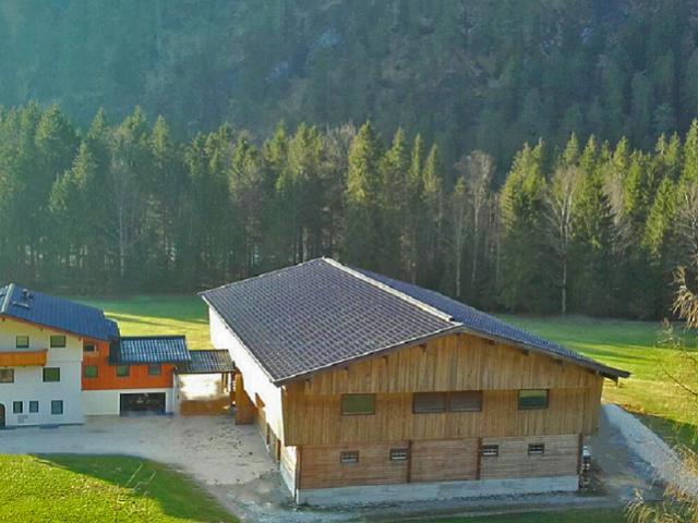 ferien-bauernhof-salzburg - urlaub.png