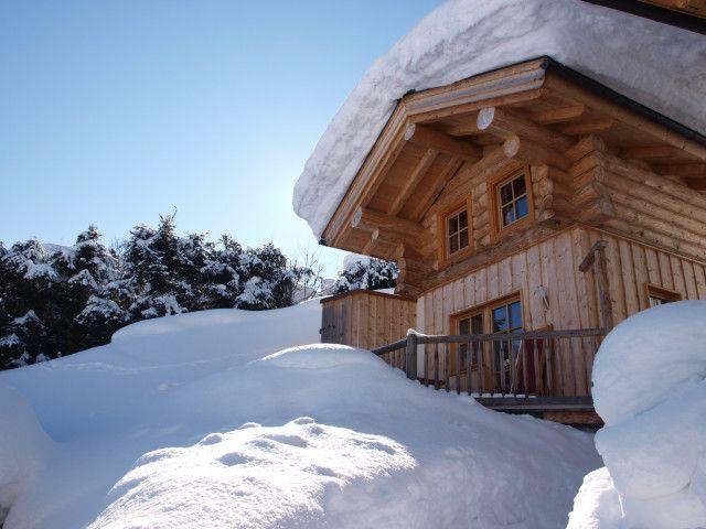 Murmeltier_Winter.JPG