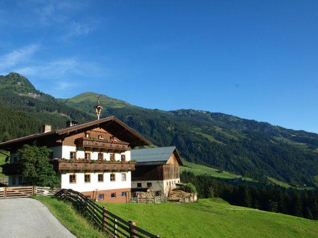 Biohof-Maurachgut-Sommer-Gasteinertal-Natur.JPG