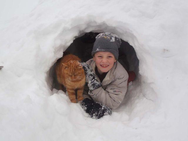 bauernhof-winterurlaub.jpg