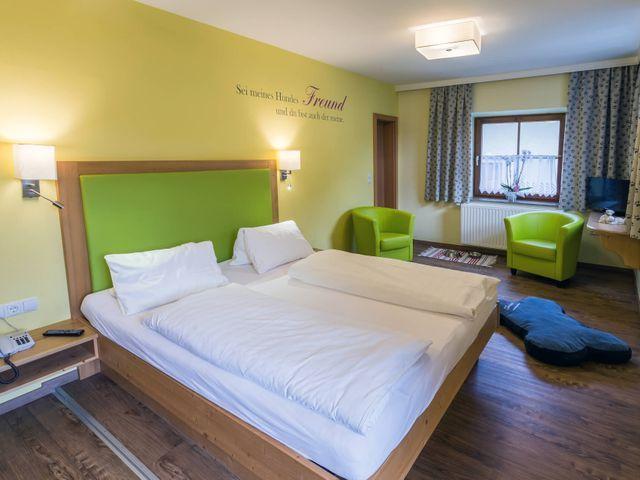 hotel-hunde-urlaub-salzburg.jpg