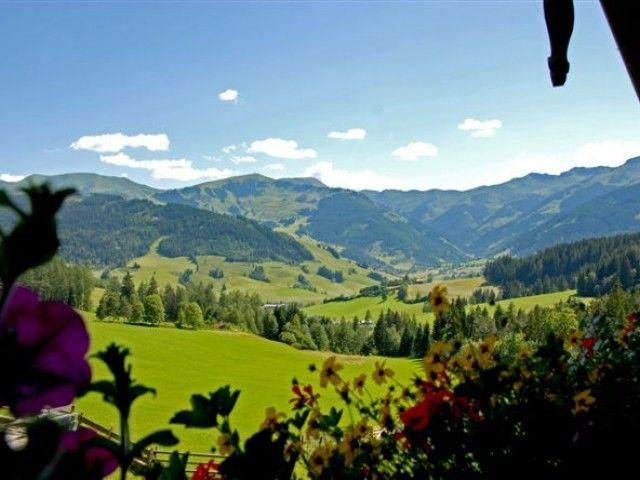 Blick_in_die_Berge.jpg
