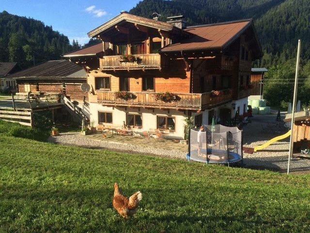 Außen Sommer Huhn.jpg